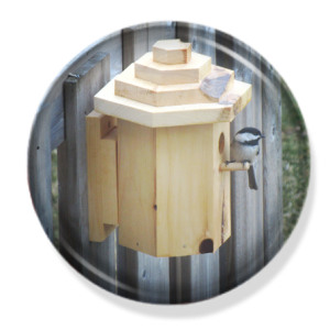 Hexagonal Birdhouse |Cranmer Earth Design
